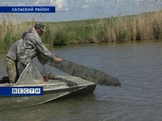 запрет на ловлю раков в ростовской