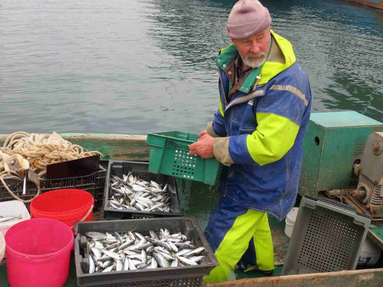 рыболов на севастопольском